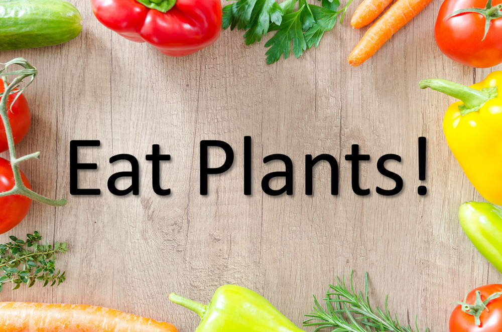 What Will A Plant-Based Diet Do For Me?